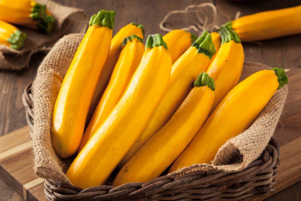 Can you freeze yellow squash