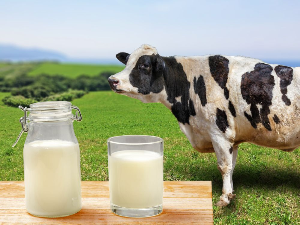 Can you freeze raw milk