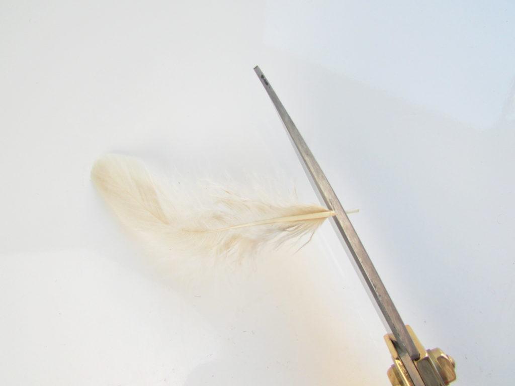 trim-quills
