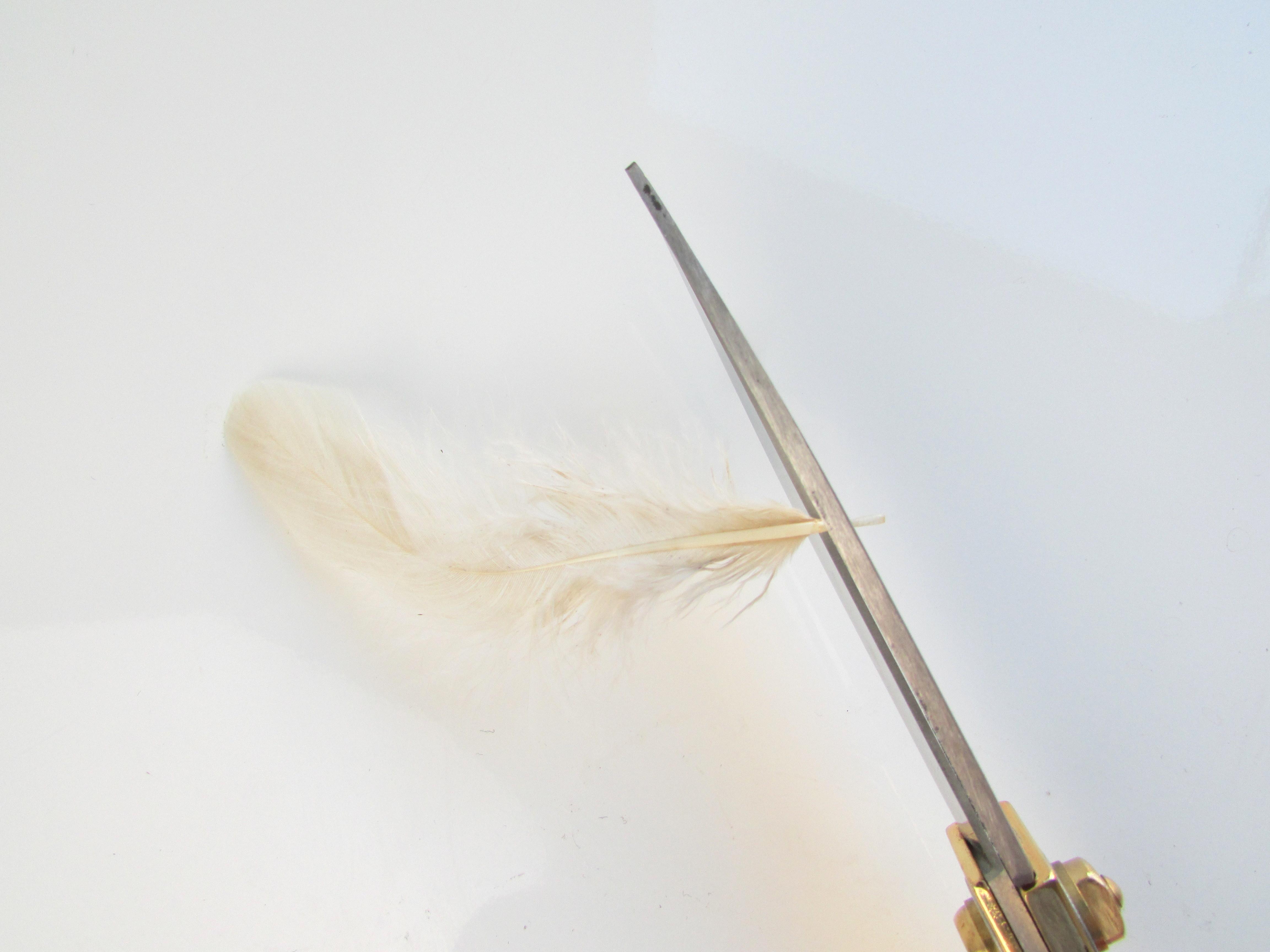Trimming quills