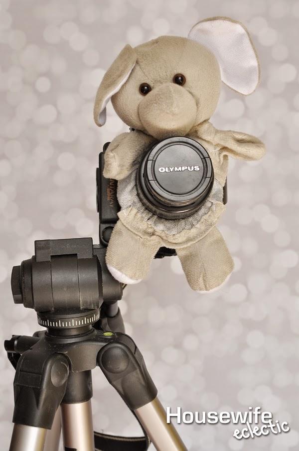 Camera Lens Pal