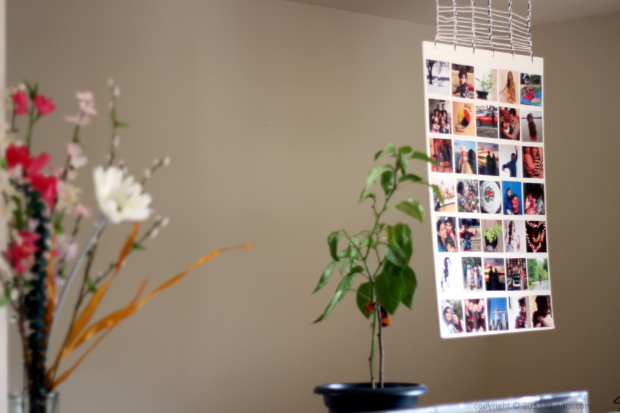 DIY Instagram Photo Collage Hanging Wall