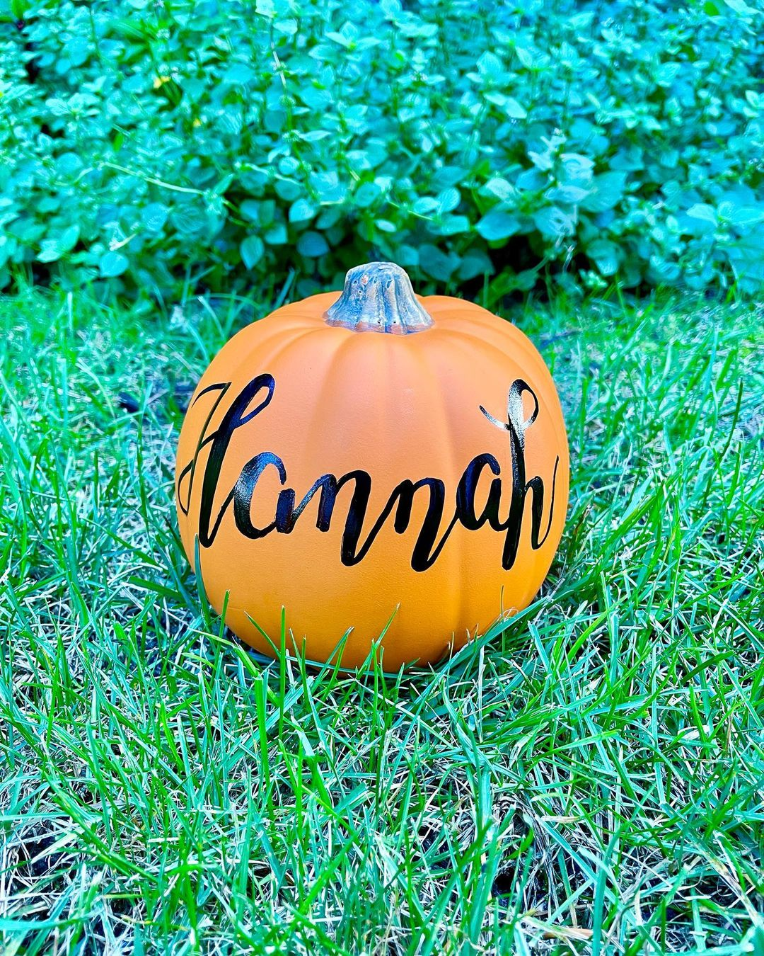 Halloween pumpkin ideaas custom named pumpkins