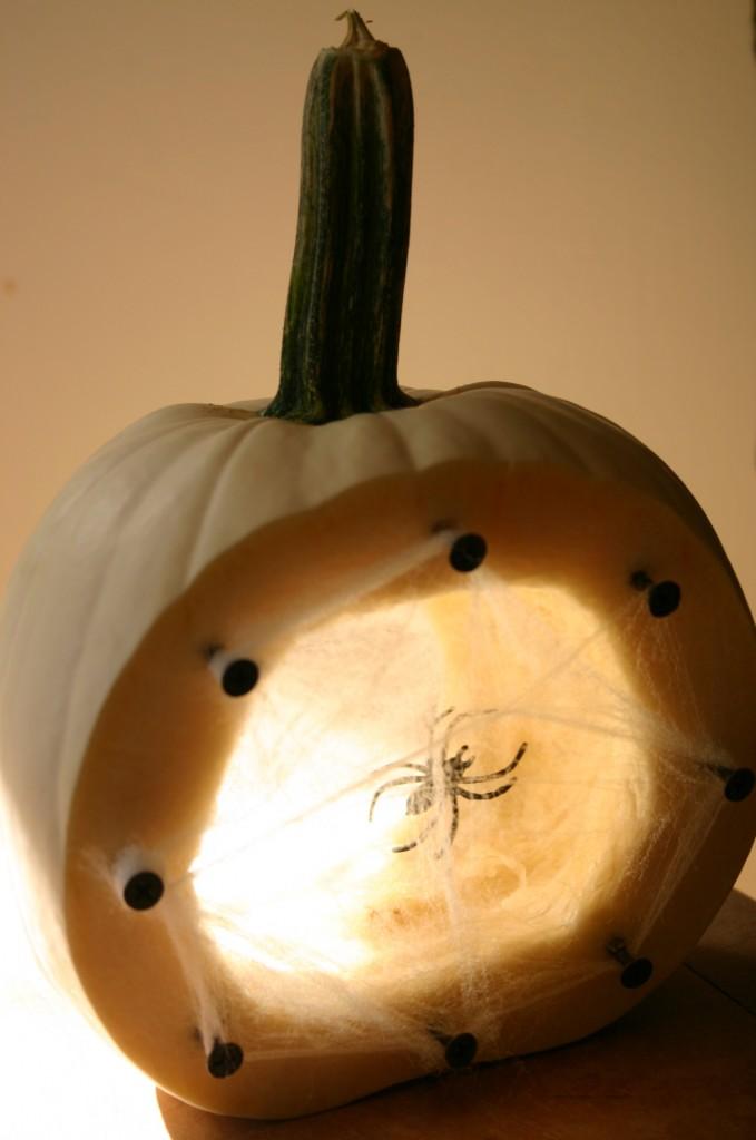 spiders nest pumpkin