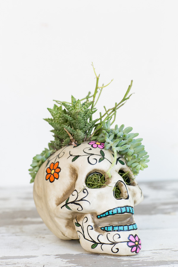 DIY Day of the Dead skull