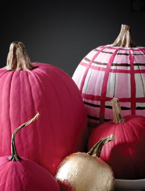hot pink pumpkins