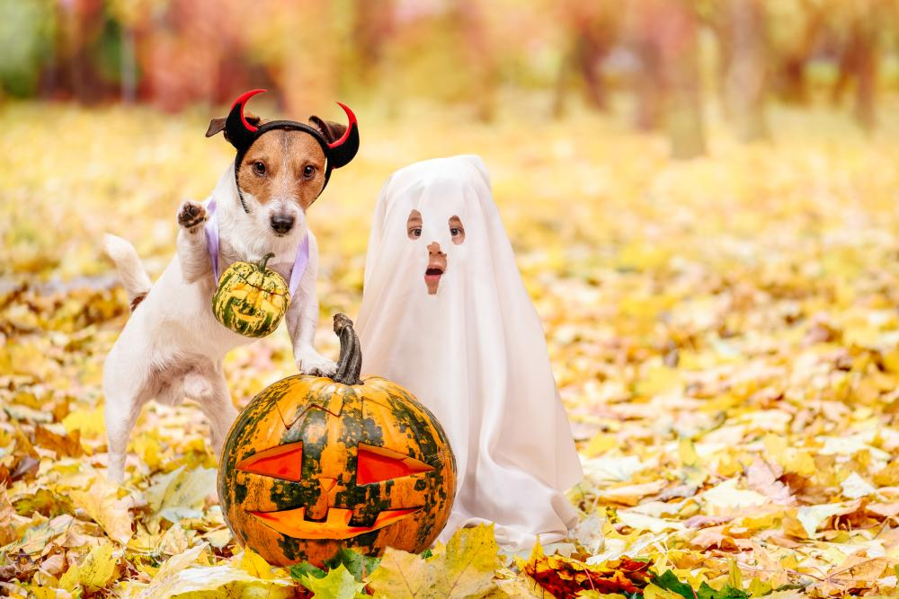 Easy diy halloween costumes ghost