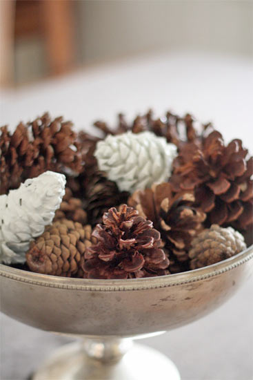 Paint_Dipped_Pinecones