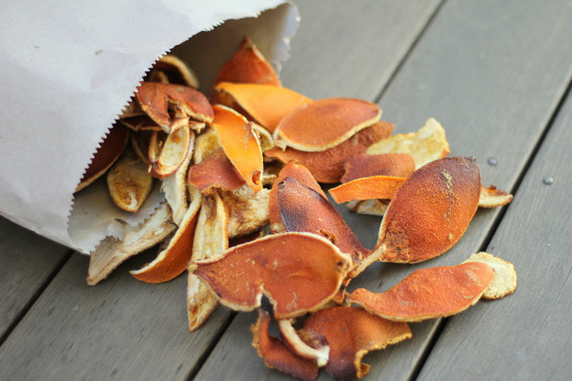 diy orange peel fire starter