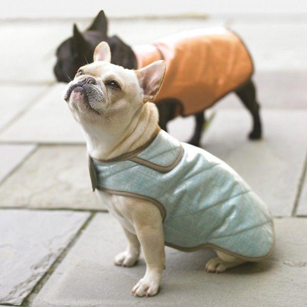 dog jacket sewing tutorial