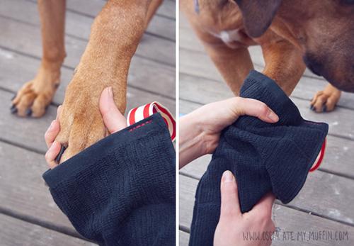 dog towel mitten muddy paws