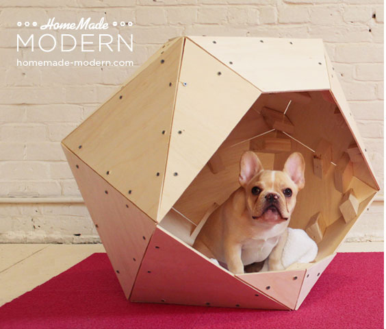25 contemporary diy projects for your dog or cat