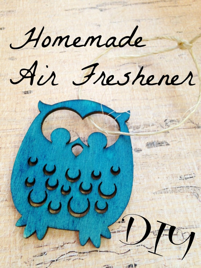 DIY Air Freshner