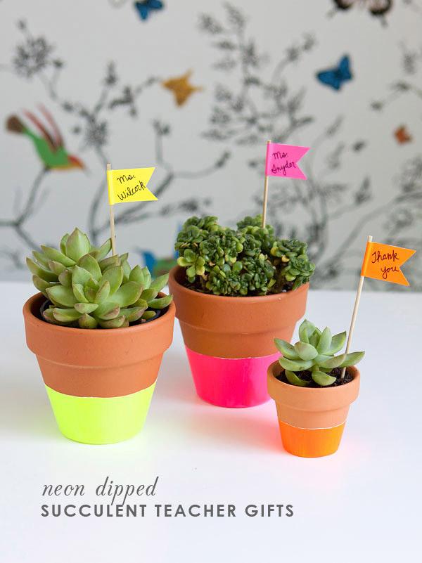 DIY Succulent Teacher Gift