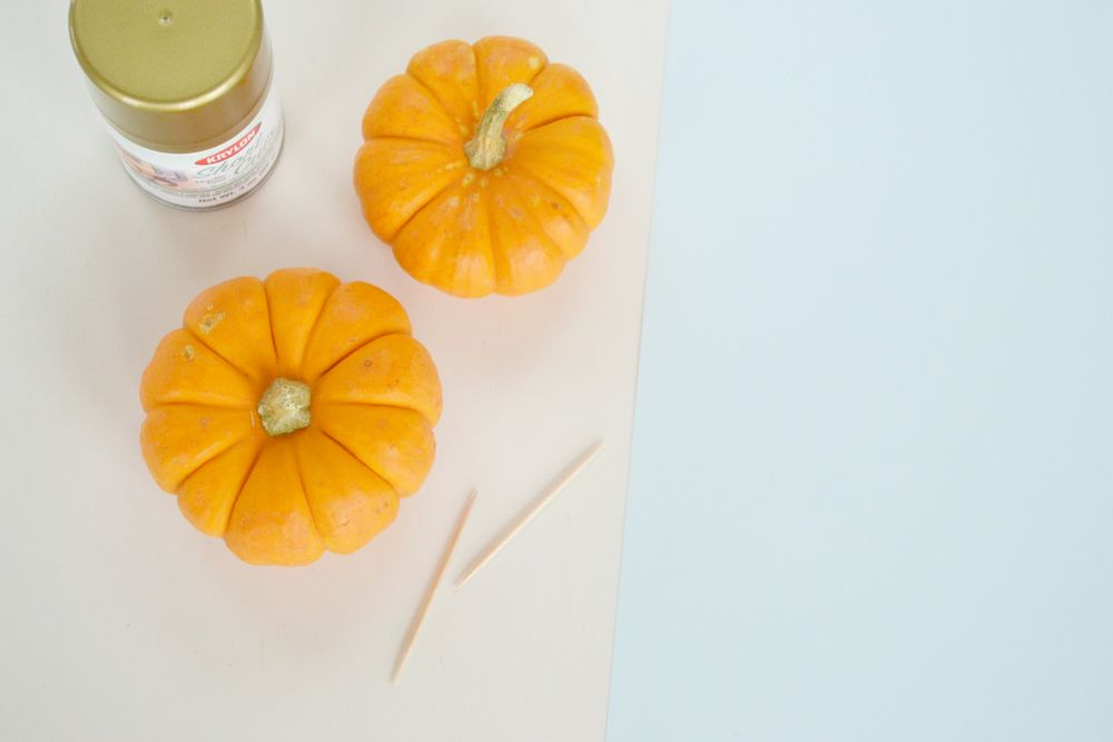 Vibrant Pumpkin Place Card Setting - Materials