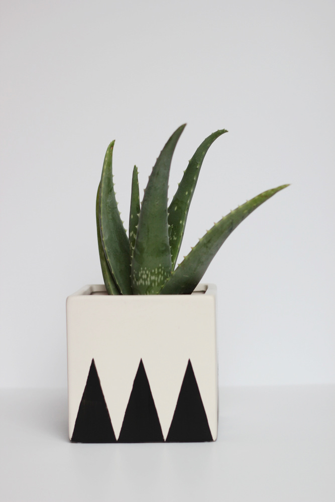 black and white cube planter