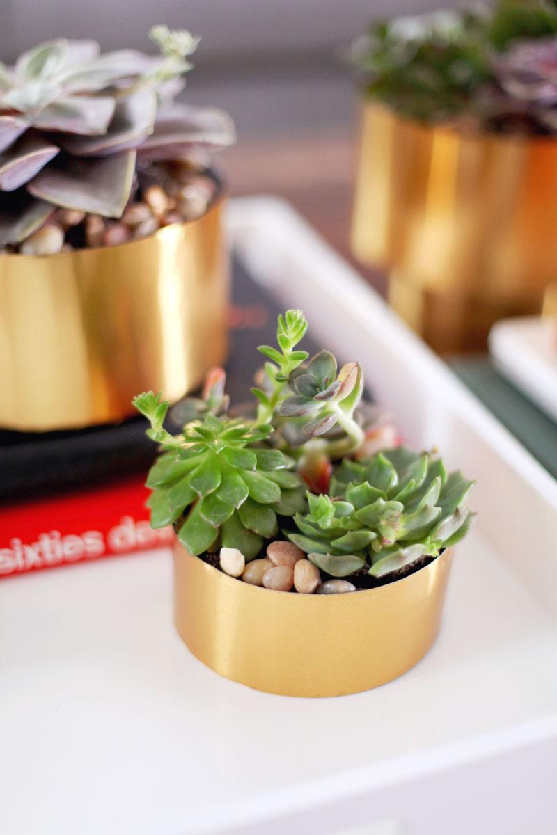 brass succulent planter