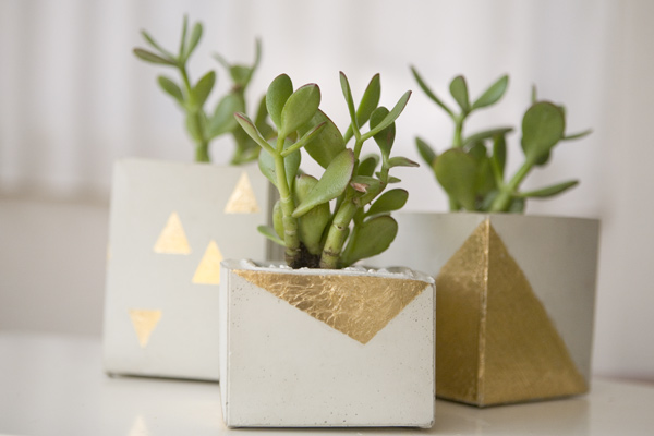 gold leaf diy cement planters