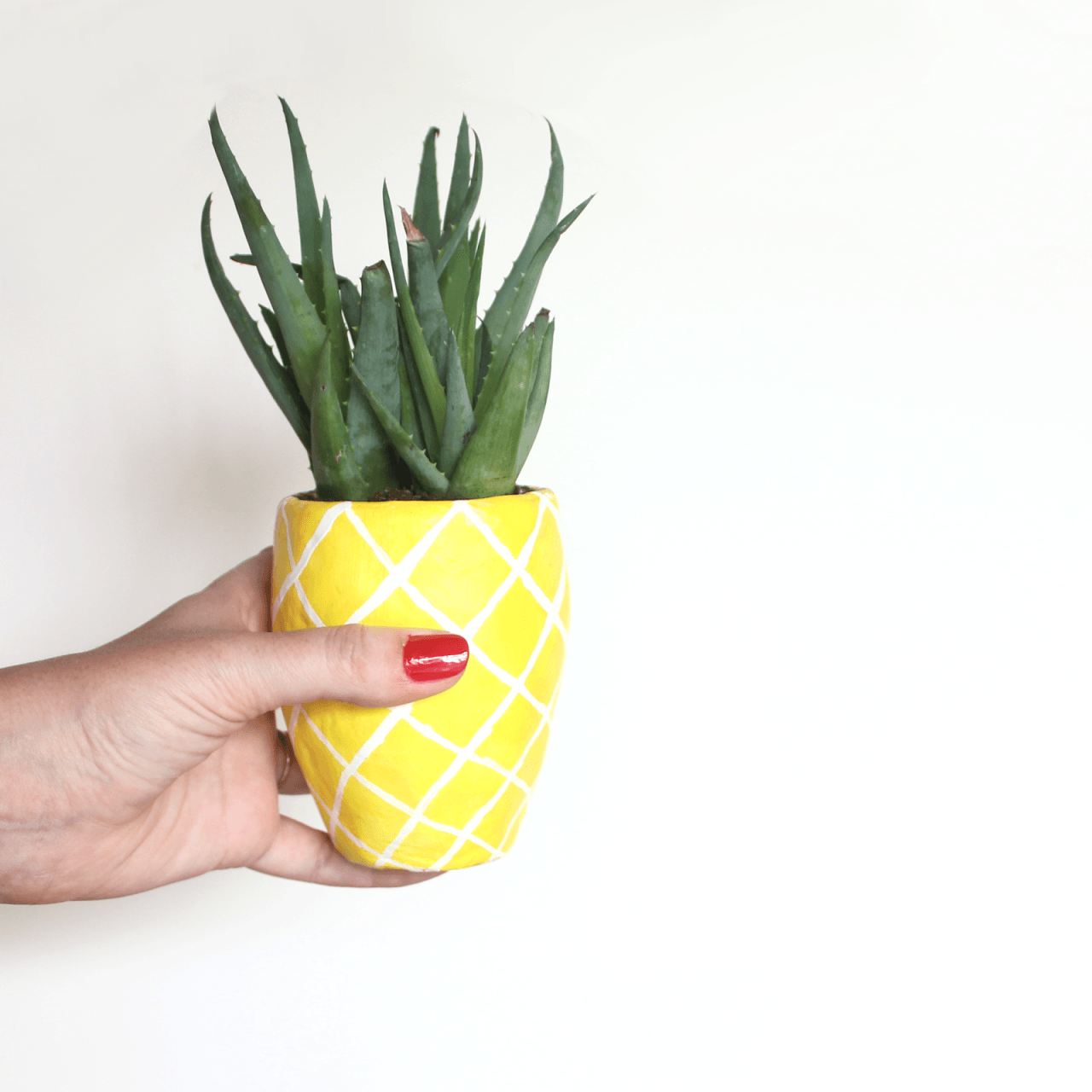 pineapple planter diy
