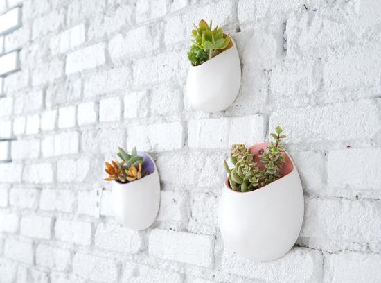 plant wall pockets