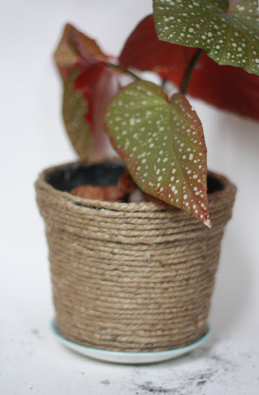 rope covered planter