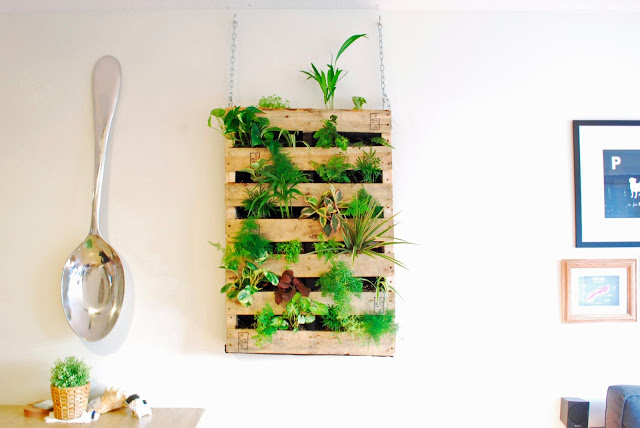 Diy Lliving Pallet Wall