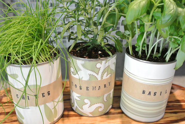 DIY Mini Indoor Herb Garden