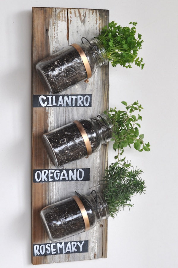 mason jar herb garden diy - Diy Indoor Garden