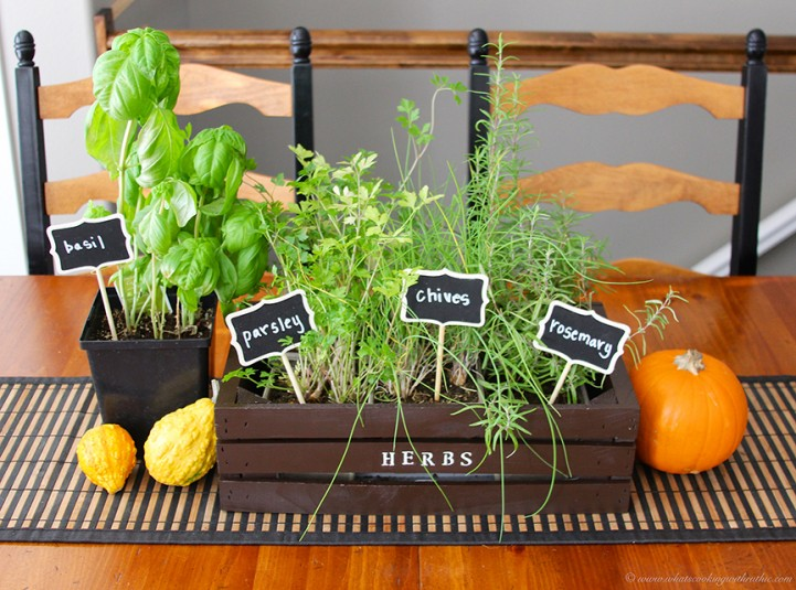 Indoor-Herb-Planter-