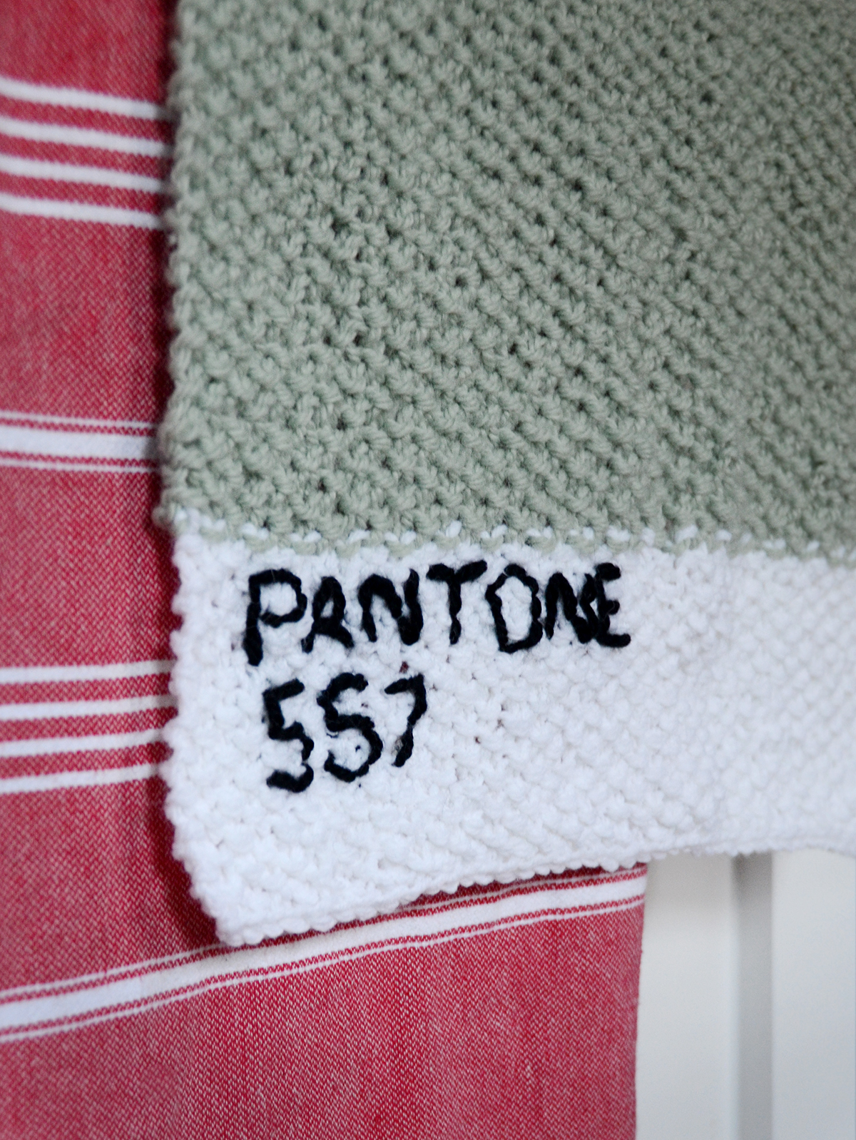 Pantone Towel 5