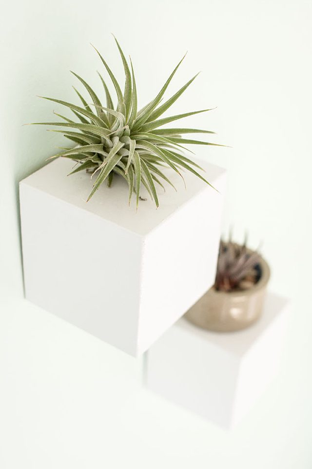 DIY Contemporary Planters
