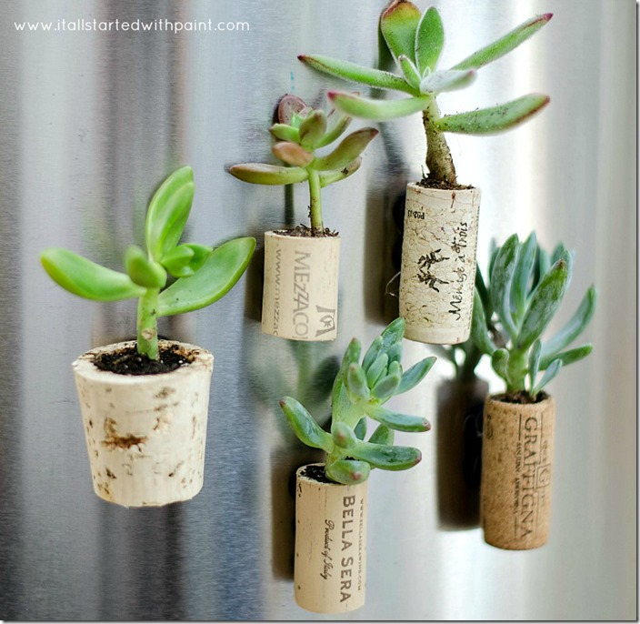 magnetic wine cork planters