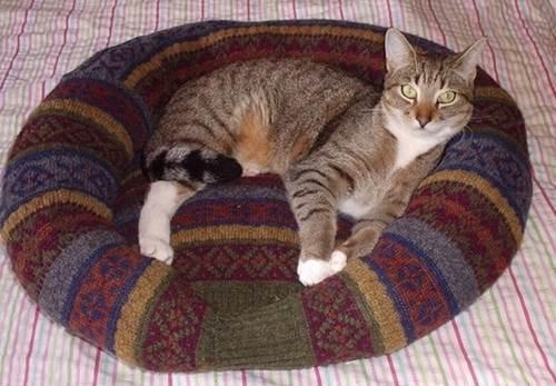 27 DIY Comfy Pet Bed Old Sweater
