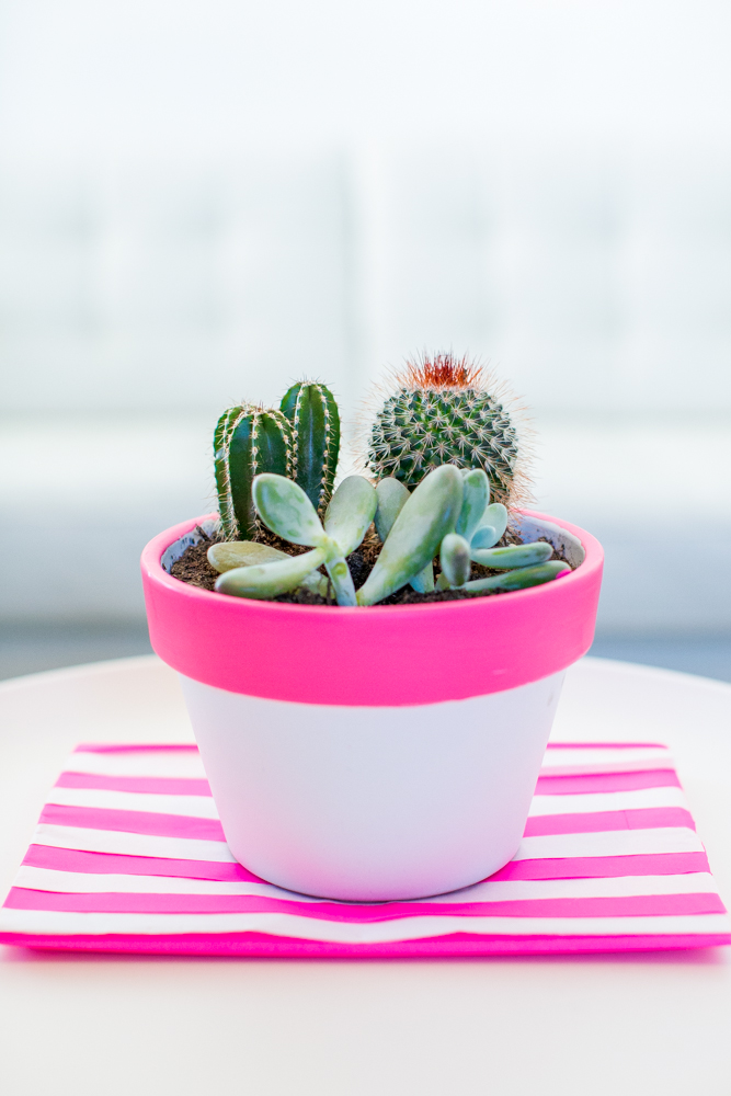 31 neon plant pot