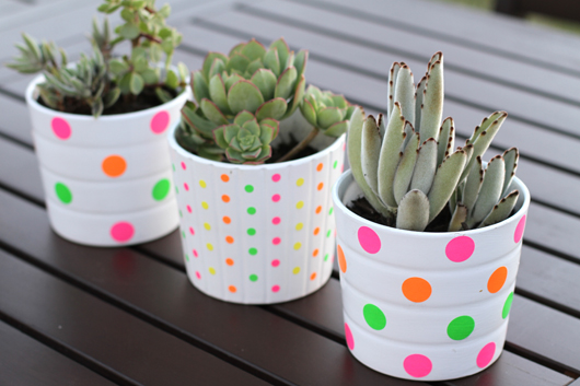 44 neon polka dotted pots planters