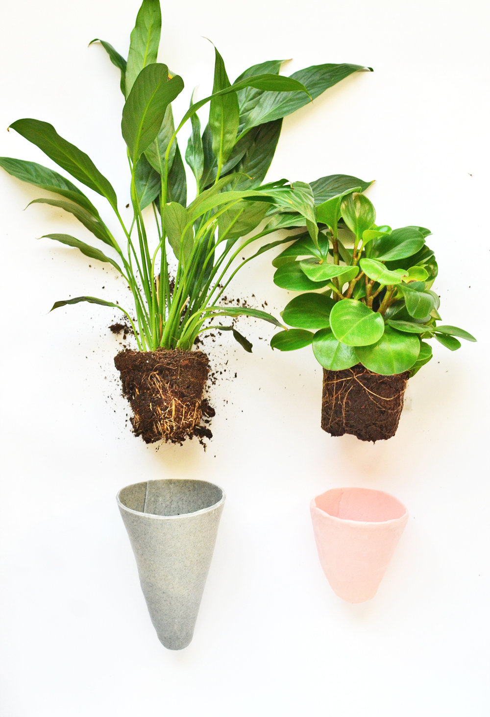 DIY Conical Planters