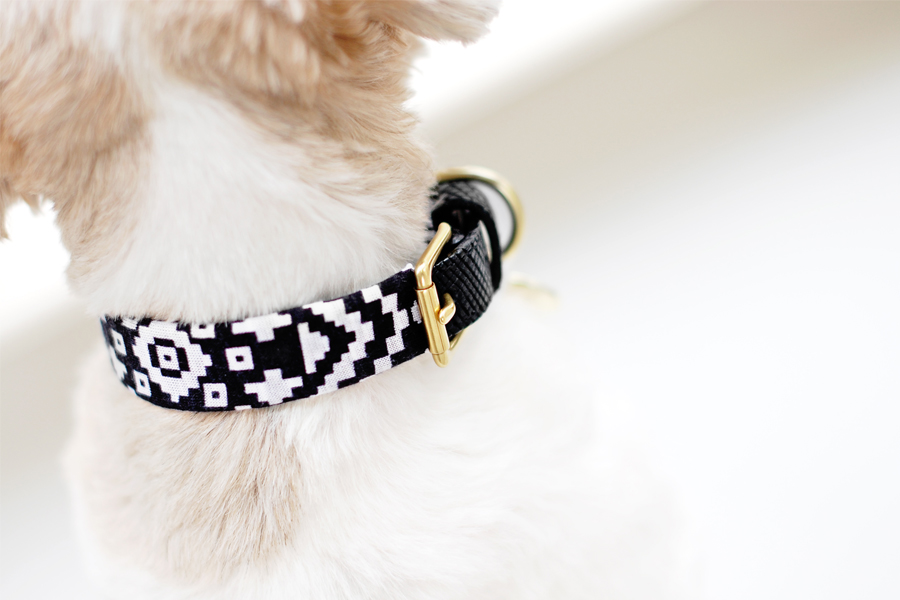 DIY-Dog-Collar-Sleeves