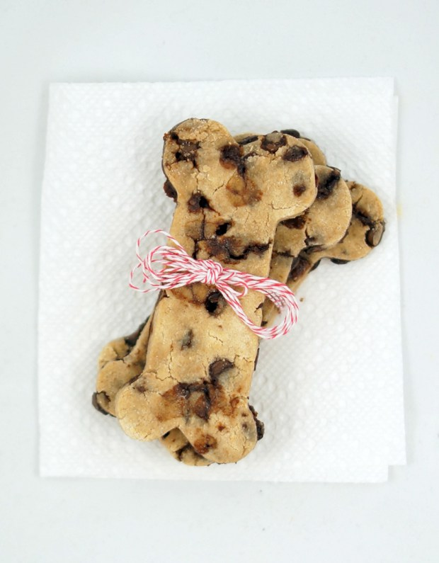 DIY Dog Cookies