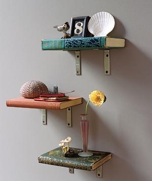 book-book-shelves