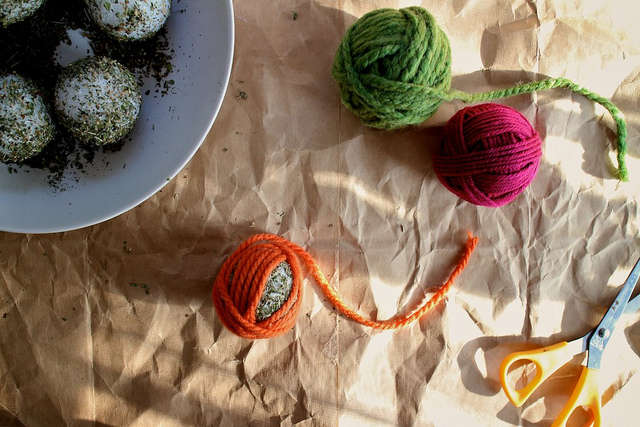 Diy Cat Toys Your Furry Friends Will Love
