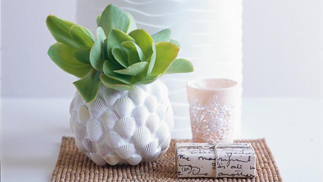 diy shell vase