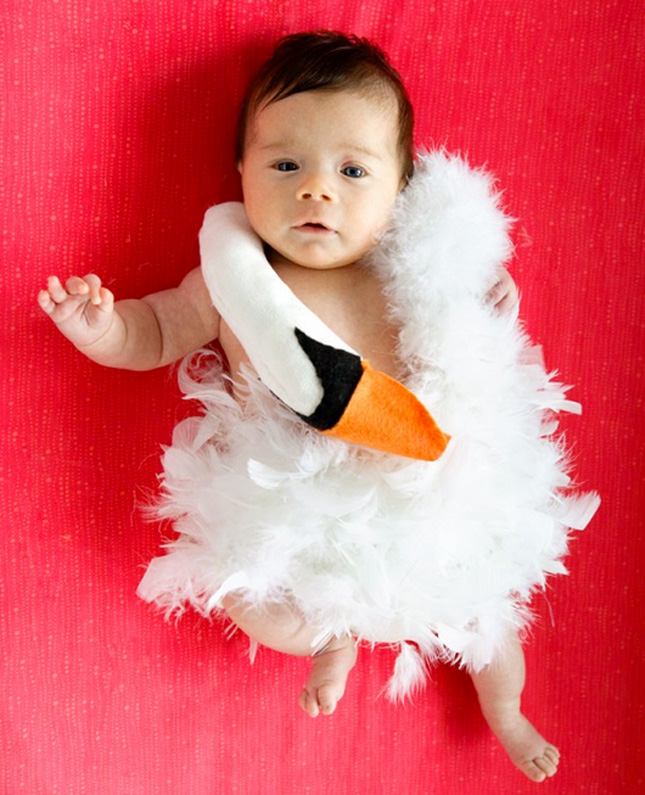 Check out these 50 creative baby costumes for all kinds of events diy bjork baby costume solutioingenieria Gallery