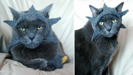 Lady liberty cat hat