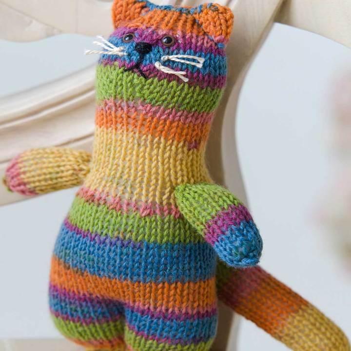 Socks the cat
