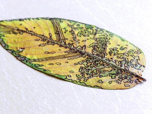 6 sharpie dried leaf