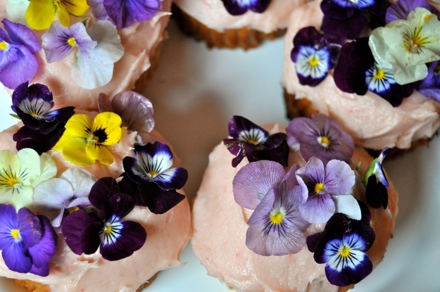 Springtime food and drink recipes that actually involve edible flowers edible flower cupcakes mightylinksfo