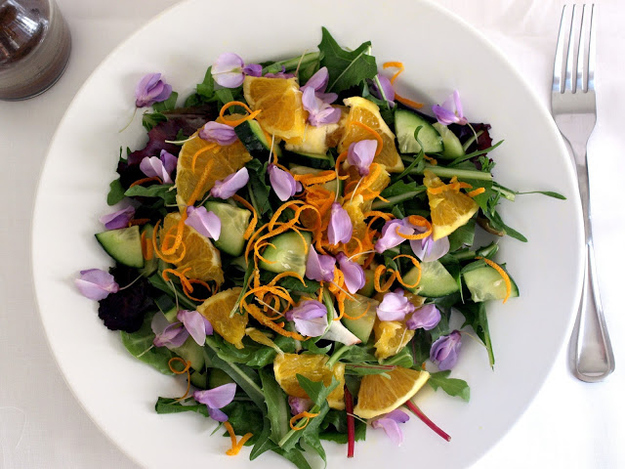Edible flower spring salad with dandelion greens
