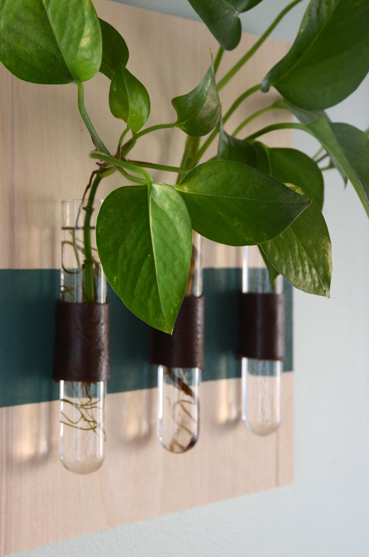 Diy test tube vases 8