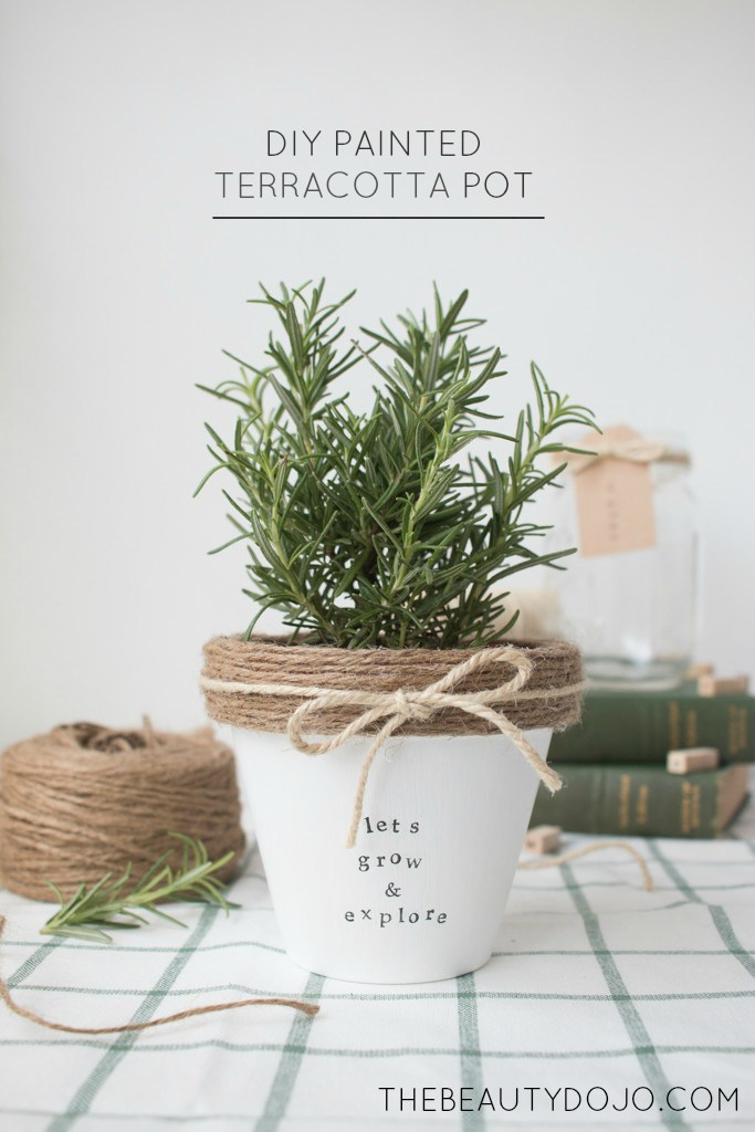15 potted herb plant