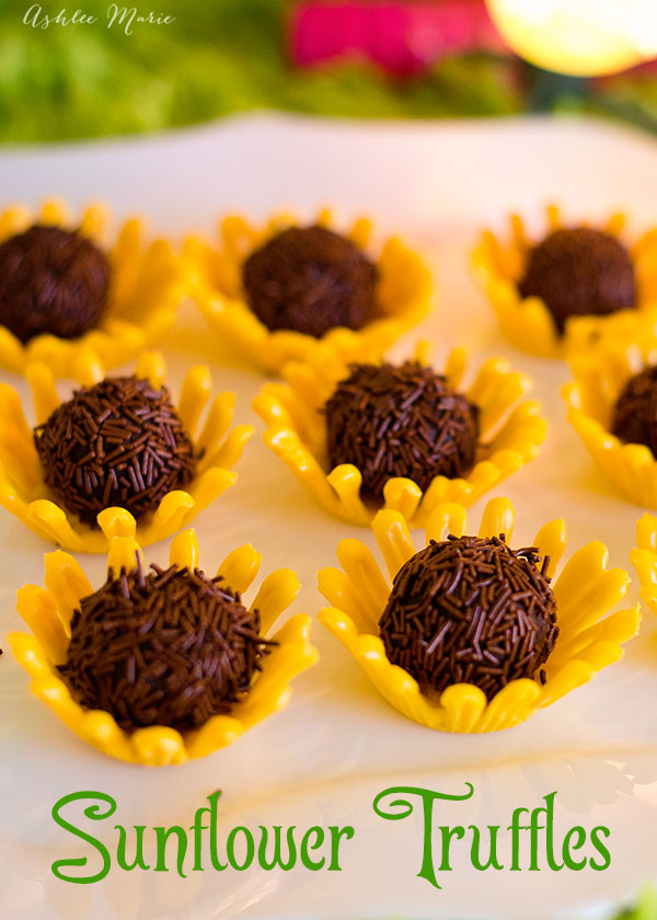 sunflower dessert truffle recipe